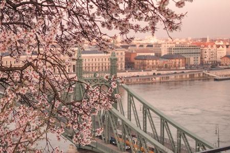 IMF forecast for Hungary and Malta economy